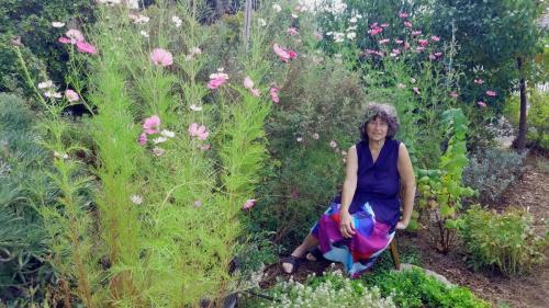 cosmos, gardener