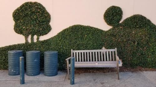 wall, vine, sculpture, trash cans, bench